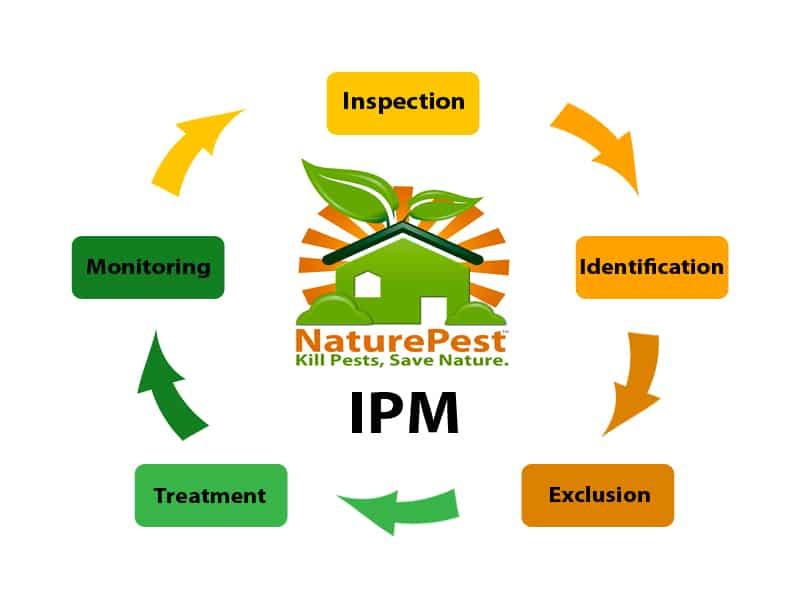 Mercado global de manejo integrado de plagas MIP