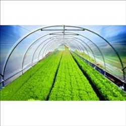 Mercado mundial de películas y adhesivos agrícolas